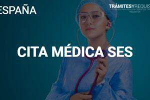 Consigue tu cita médica en el sistema SES en España
