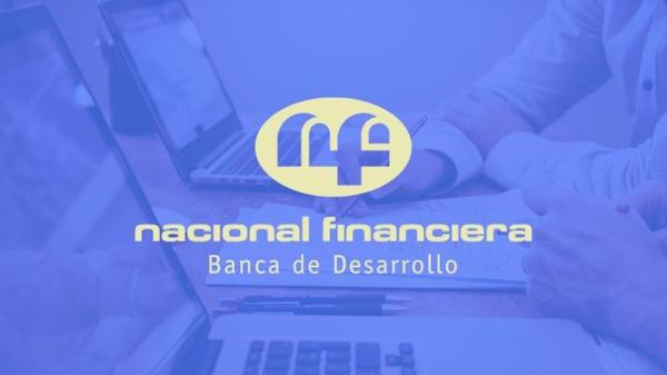 Credits from Nacional Financiera Mexico