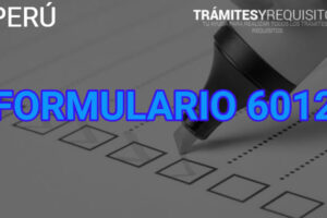 Formulario 6012 EsSalud: Registrate en +Vida Seguro de Accidentes