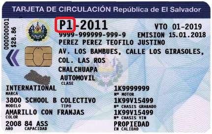 Salvador driver's license