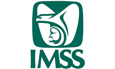 What is the IMSS